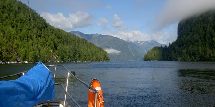 Stunning scenery sailing in the Great Bear Rainforest in British Columbia, Canada with Bluewater Adventures